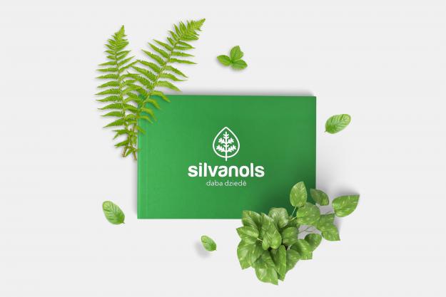 Silvanols брендбук